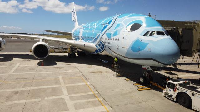 ANA A380フライングホヌ